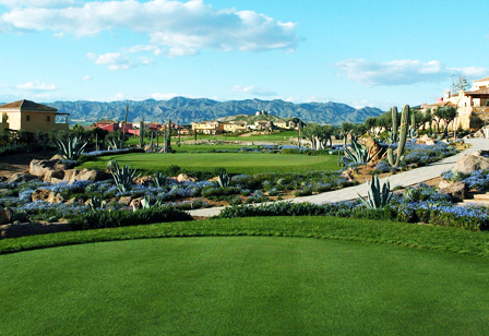 2008-09-22_the_beauty_of_desert_springs.jpg