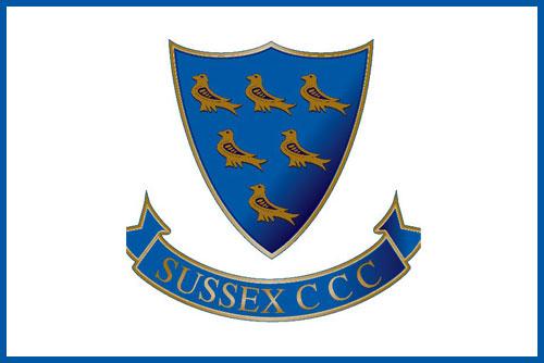 DSGR-Testimonial-Sussex-CCC