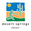 Torneo Inter-County Over 60´s en Desert Springs Logo